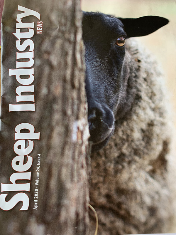Sheep Industry News - April 2020